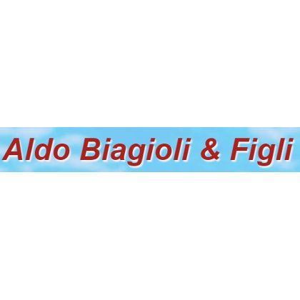 Immagine per il fornitore ALDO BIAGIOLI