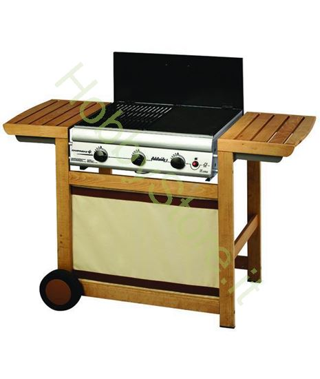 Picture of Barbecues a Gas Adelaide Woody 3