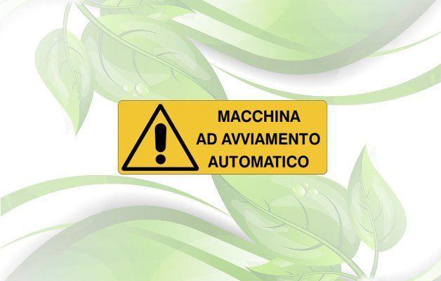 Immagine per la categoria Generatori con avviamento Automatico