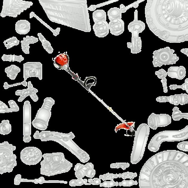 Immagine per la categoria Ricambi Decespugliatori BC 360 4S Oleomac