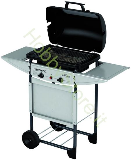 Picture of Barbecues a Gas Expert Plus
