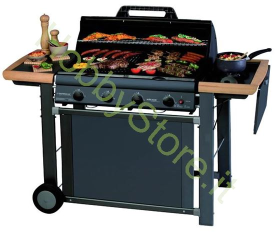 Picture of Barbecues a Gas Adelaide 4 Classic