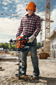 Picture of Mototrivella Stihl BT 130 professionale