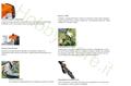 caratteristiche Decespugliatore a zaino Stihl fr460tcem