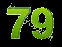 Immagine di 79 Protezione